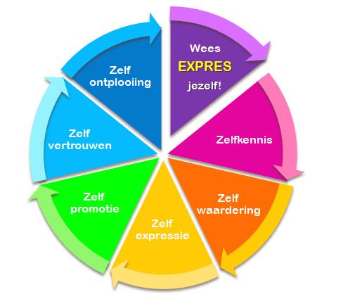 7 stappen Nederlands